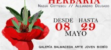 banner chico Hervaria